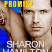SEAL's Promise Novella by Sharon Hamilton