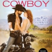 DNF: Rebel Cowboy by Nicole Helm