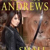 Small Magics by Ilona Andrews